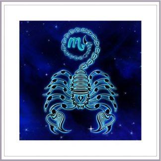 Scorpio: October 23 - Nov.21 - The Scorpion