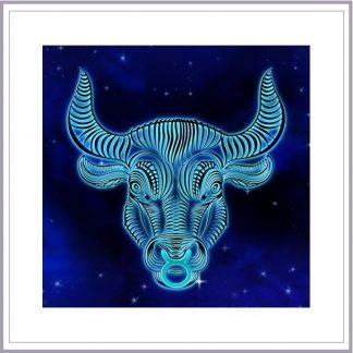 Taurus: April 20 - May 20 The Bull.